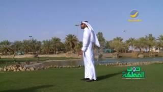 منتزه البحيرة بمحافظة المذنب.. 65 ألف متر مربع من الجمال