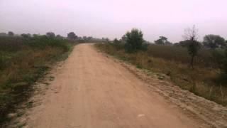 Ride To Singur Dam - 5