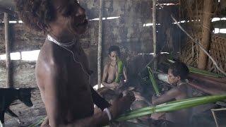 Путешествие в каменный век. Папуа Новая Гвинея.(Документальный фильм о путешествии в Западную часть острова Папуа Новая Гвинея. Там все еще есть племена,..., 2013-06-07T15:32:01.000Z)