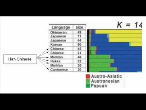 The Genetic difference between East Asians