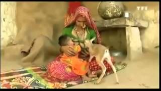 breast feeding baby with animal