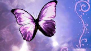 Bushido - Schmetterling (with Lyrics)