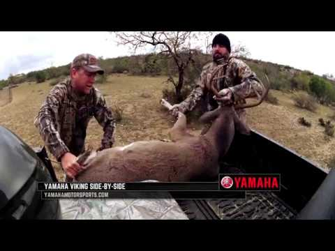 Texas Deer Hunting During The Rut
