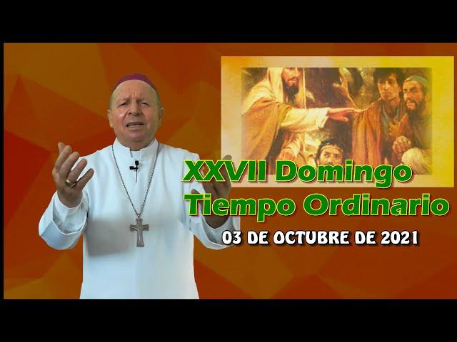 XXVII DOMINGO ORDINARIO
