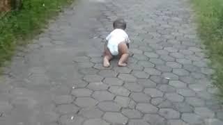 Download Video Bayi kabur dari rumah 😂😂😂 MP3 3GP MP4