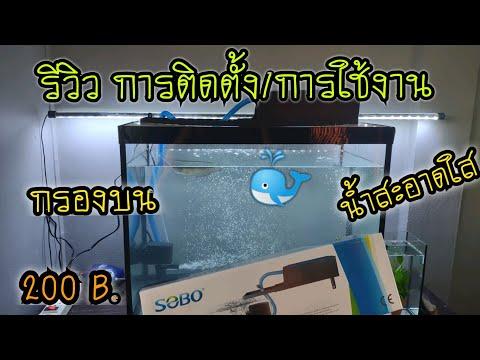 รีวิว การใช้งานกรองบนตู้ SOBO WP1880F กำลังไฟ25W ในตู้ 25 นิ้ว น้ำสะอาดขึ้นเยอะ ราคา 200 บ.เท่านั้น