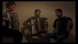 Eurythmics - Sweet Dreams (Crazy Accordion Trio Cover)