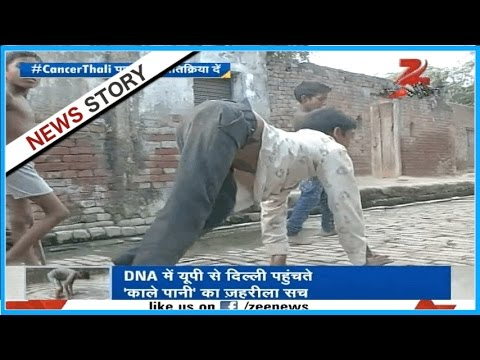 DNA : How poisonous chemicals and industrial wastes diluting on rivers are killing people