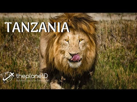 Tanzania - Top 12 Things to do  | The Planet D | Travel Vlog 2018