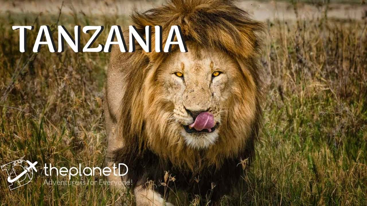 Tanzania - Top 12 Things to do    The Planet D   Travel Vlog 2018