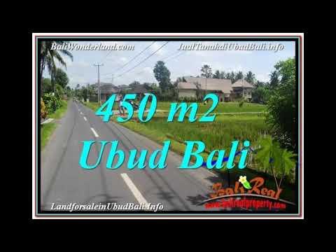 Beautiful PROPERTY Sentral / Ubud Center BALI LAND FOR SALE TJUB647