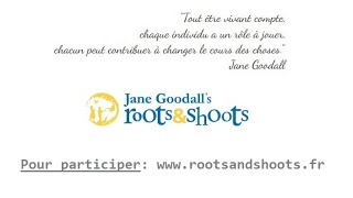 Jane Goodall's Roots & Shoots par National Geographic Television VOSTFR