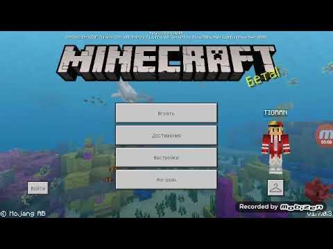 Minecraft Arm