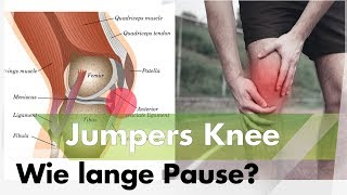 jumpers knee rehab