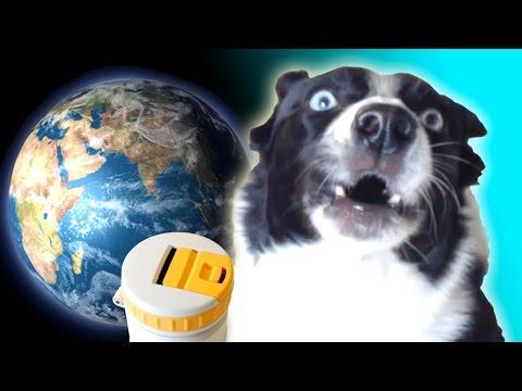 Talking Dog Saves the World – Podcycle Kickstarter