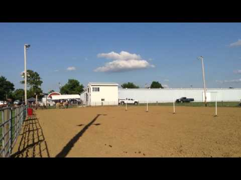 July 16, 2016 - Monroe County Fairgrounds, Waterloo IL - Jocelyn & Streak Pole Bending Race