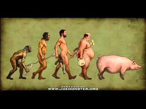Big Cyc - Facet to Świnia