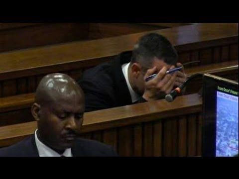 Oscar Pistorius Trial Day 26: Athlete Was 'Frantic'
