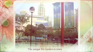 Publication Date: 2017-04-10 | Video Title: 新填地街141號 (眾坊街) 「恒運樓」(亦稱恆運樓) 低密