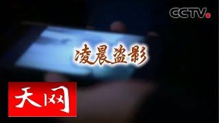 《天网》 凌晨盗影 | CCTV社会与法