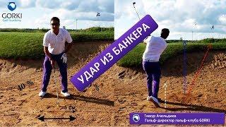 Урок по гольфу в гольф клубе GORKI - Удар из банкера