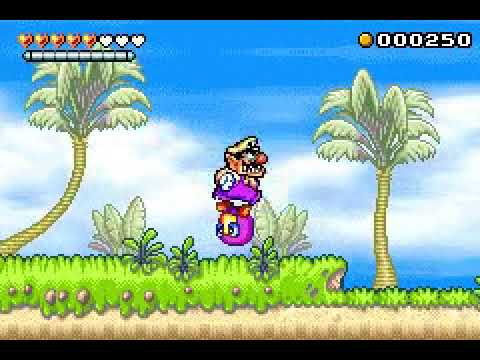 Wario Land 4 Asm Hack Test