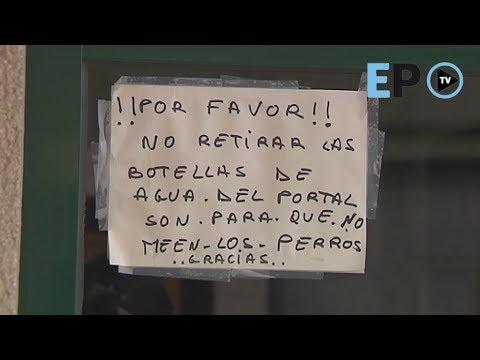 Comunidades de vecinos de Lugo y dueños de bajos, en guerra contra el pis canino
