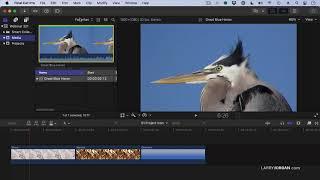 Understanding Browser Clip Line Colors in Apple Final Cut Pro