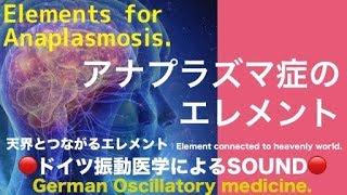 🔴ドイツ振動医学によるアナプラズマ症編|Anaplasmosis by German Oscillatory Medicine.