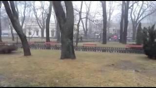 Odessa city garden with fog
