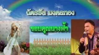 ขอบคุณนางฟ้า - ฉัตรชัย มงคลทอง [Official Audio]