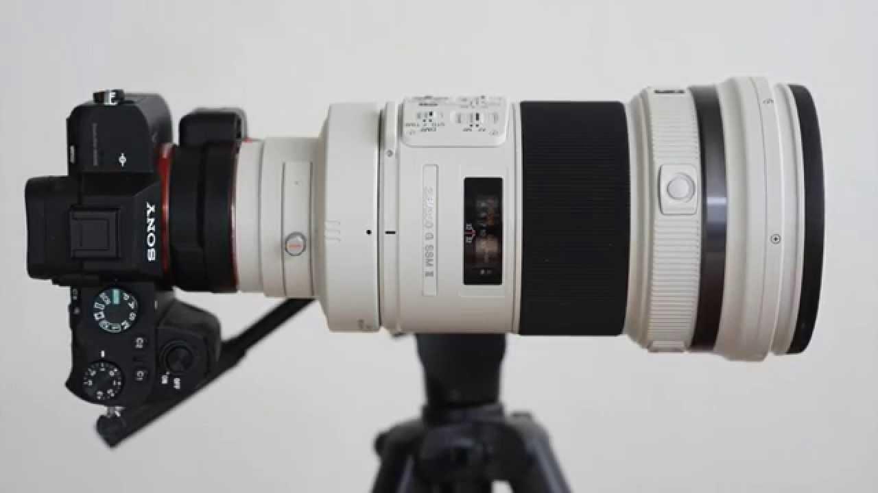 Review: Canon FD 300mm 1:2.8 L - phillipreeve.net