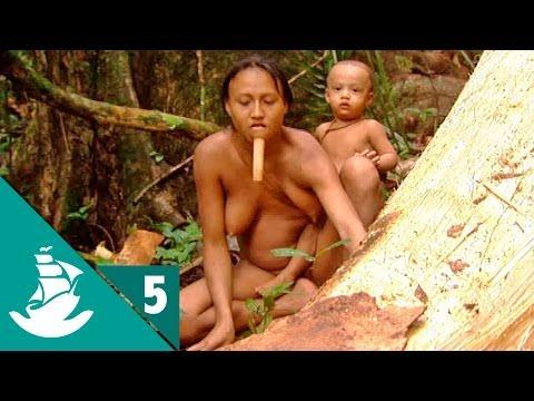 Amazonia: La Selva y el Asfalto (parte 5/5)