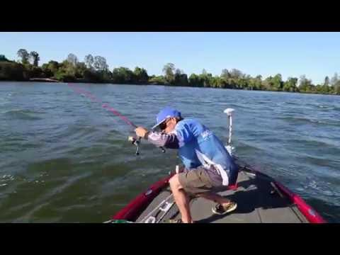 Bream Fishing With Hard Body Lures