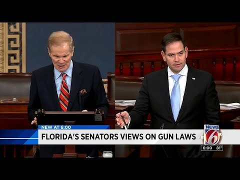 Florida senators views on gun laws