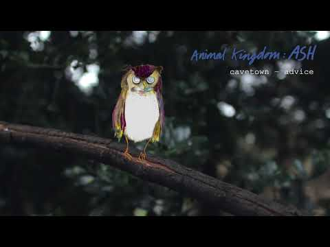 Advice by Cavetown ft. Sam Goater (Official Audio) | Animal Kingdom