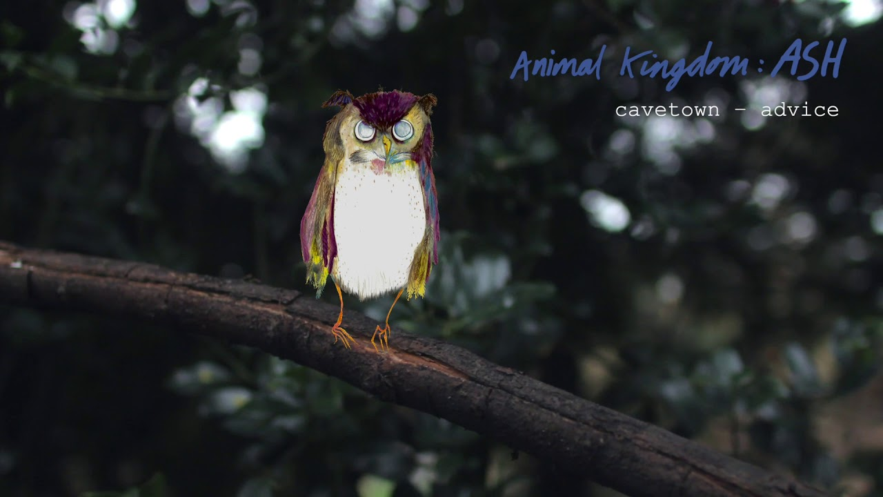 Download Advice by Cavetown ft. Sam Goater (Official Audio)   Animal Kingdom