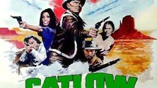 CATLOW (Suite)