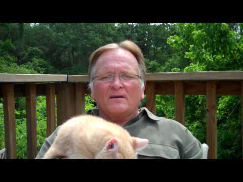 Houstonius.com - weekly whine - with Garth the cat