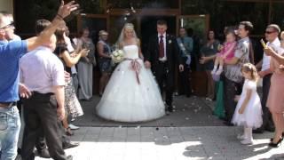 Свадьба Дмитрия и Евгении