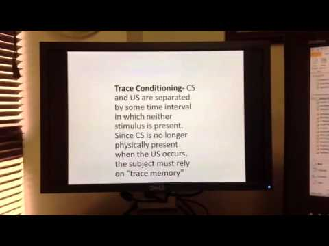 Timing In Classical Conditioning