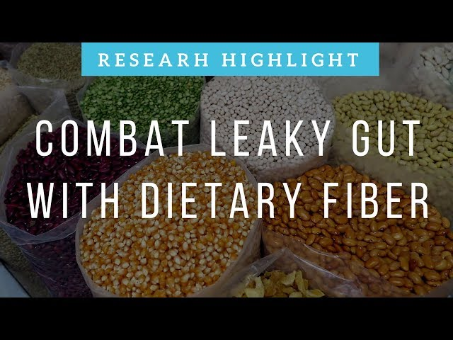 Combat Leaky Gut with Dietary Fiber | Research Highlight