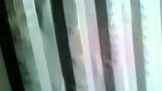 Контейнер  20-1шт-серый.mp4(Продажа контейнеров морских, мусорных, складских, железнодорожных. Доставка по Украине. 0445680834, 0635680834, 0503851655,..., 2011-10-13T20:09:14.000Z)