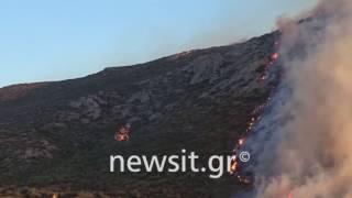 Ελικόπτερο στη φωτιά στα Καλύβια Αττικής