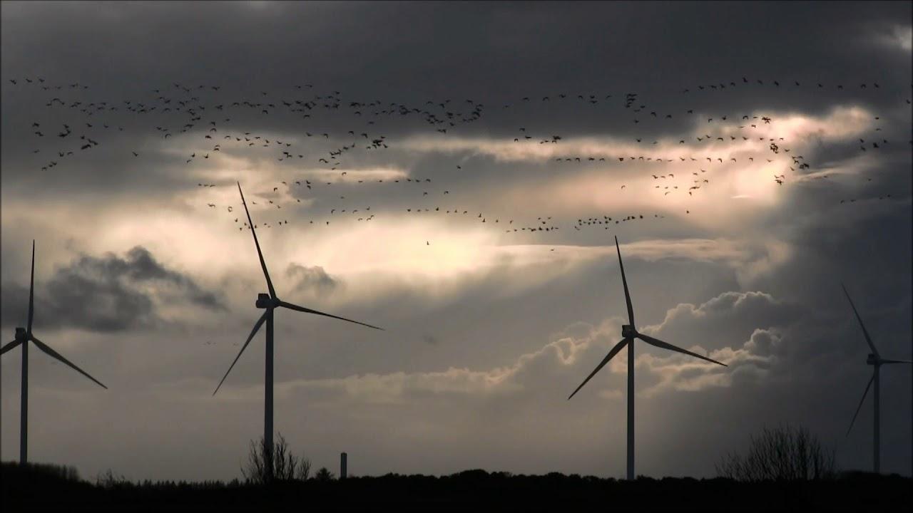* Vinden Er Jordens Grønne Fremtid * Vindmøller 2017 - 01.