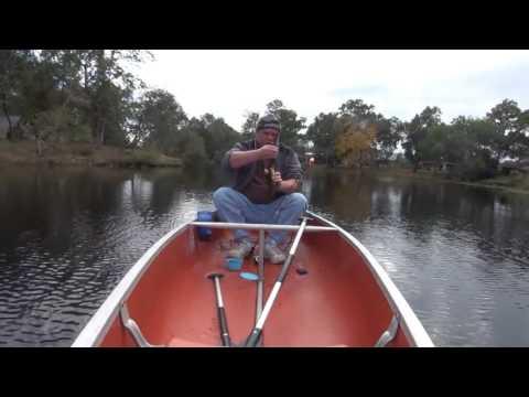 Cool Beaners Bass Fishing