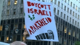 Activists Defiant on Israel's Travel Ban Targeting BDS Supporters: