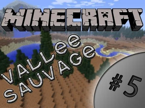 La Vallée Sauvage - Ep5 - Le Nether ?!