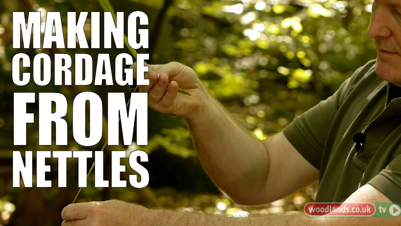 Making Cordage from nettles
