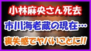 【愕然】小林麻央さん死去、市川海老蔵の現在がヤバいことに・・・ 市川海老蔵 検索動画 21